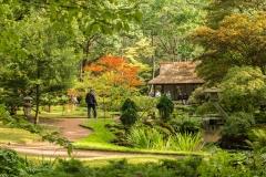 Japanse Tuin Clingendael Den Haag 1