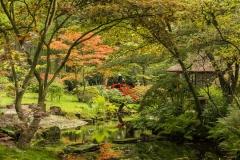 Japanse Tuin Clingendael Den Haag 6