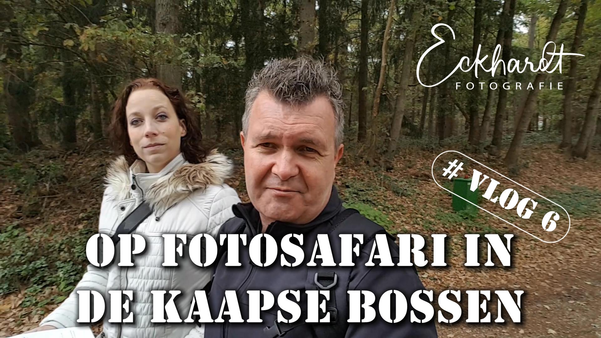 Fotosafari Kaapse Bossen