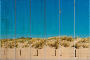 De duinen van Den Haag