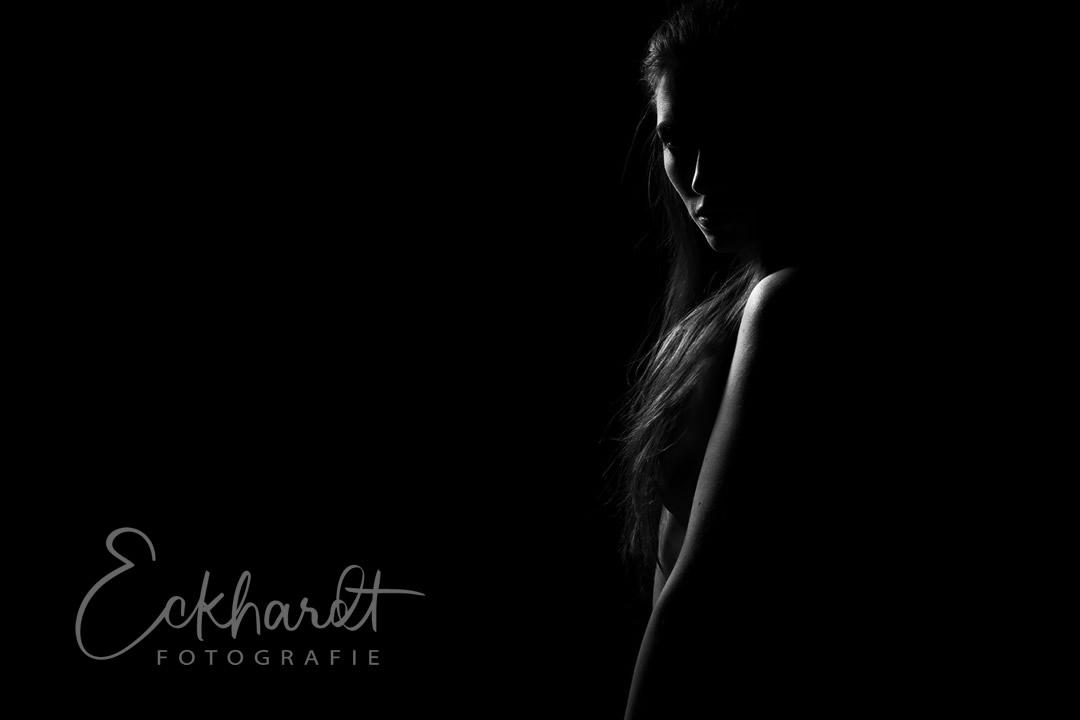Zonder licht is er geen fotografie